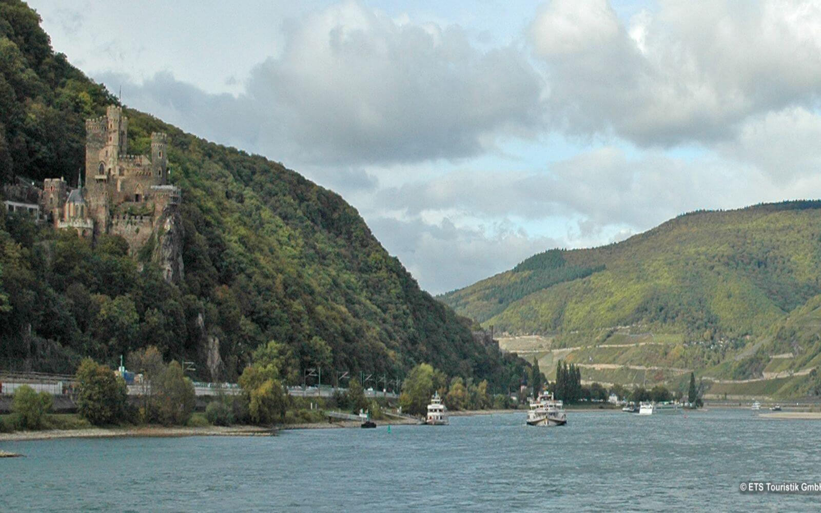 Rhine Valley with Lunch and Wine